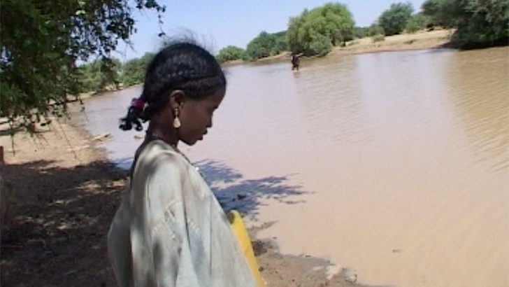 guinea Worm in Mali